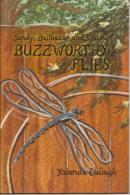 Sandy, Balthazar and Willow: Buzzworthy Flies, Dragonfly Dreams, bedtime story, beginner reader, dragonfly books, childrens books
